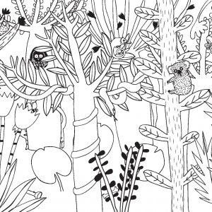 džungle Ani-Muk