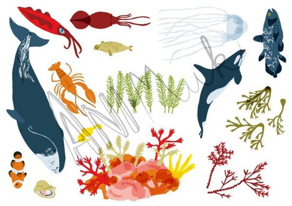 Mořští tvorové