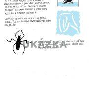 antarktida-page-007_optimized