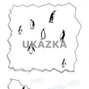 antarktida-page-008_optimized
