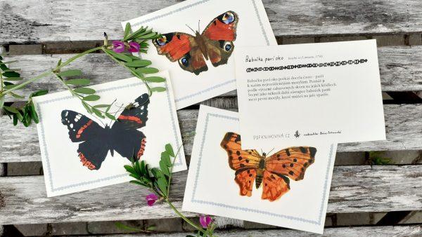 motýli
