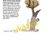 sv. vaclav-page-004